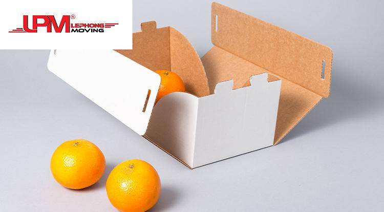 Bìa carton trắng